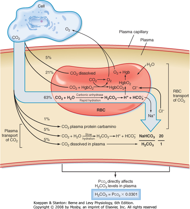 hypoventilation o2 and co2 relationship