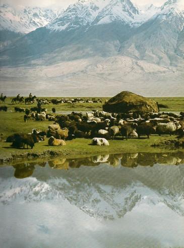 Kazah jurták a Pamír alatt napjainkban