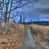 Cherokee Marsh Jigsa…
